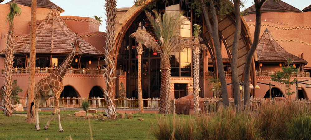 Sanaa Animal Kingdom Dining Restaurant Review Orlando City
